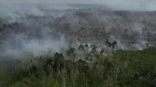 dialog-polemik-data-kebakaran-hutan-memanas-1