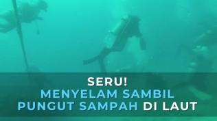 seru-menyelam-sambil-pungut-sampah-di-laut